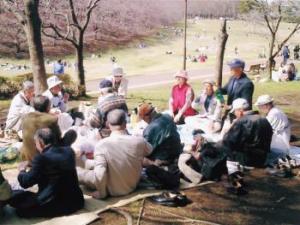 「お花見会」(平成17年4月5日:根岸森林公園)